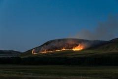 在山的夜火 库存图片