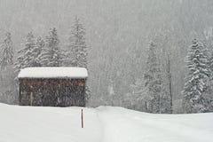 在山的大雪与pinetrees 免版税库存图片