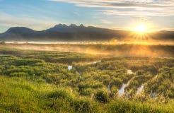 在山的太阳星与有薄雾的沼泽 免版税库存图片