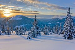 在山的好冬天 免版税库存图片