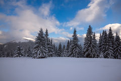 在山的安静的冬天夜在暴风雪以后 免版税库存照片