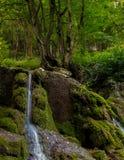 在山的小河瀑布 库存照片