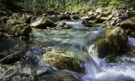 在山的小河 免版税库存照片