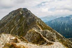 在山的峰顶在阳光下 免版税库存照片