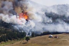 在山的巨大火 库存图片