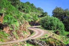 在山的弯曲道路 免版税图库摄影