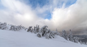 在山的恶劣天气 33c 1月横向俄国温度ural冬天 与暴风云的多云晚上 喀尔巴汗,乌克兰,欧洲 免版税库存照片