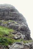 在山的旅行 免版税库存图片