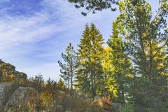 在山的日落在秋天 免版税库存图片