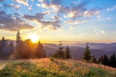 在山的日落,有绿草的沼地在太阳的光芒,在背后照明的风景 免版税图库摄影