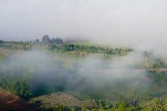 在山的早晨薄雾,有雾在冬天、薄雾和clou 免版税库存照片