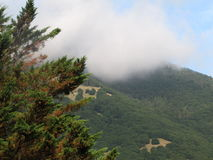 在山的早晨阴霾 库存照片