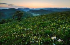 在山的早晨 免版税库存图片