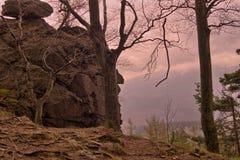 在山的早晨 免版税图库摄影