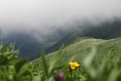 在山的春天风景 免版税库存图片