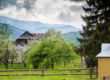在山的春天 庭院绽放和蓝色ountains 库存照片