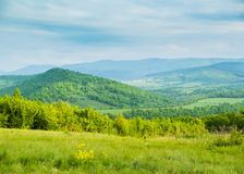 在山的春天 春天花和蓝色山沼地  免版税库存照片