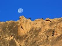 在山的月亮 免版税库存图片