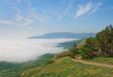 在山的有薄雾的夏天早晨 免版税图库摄影