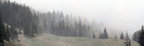 在山的有薄雾的早晨在雾 免版税库存照片