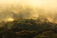 在山的有薄雾的早晨日出在北部泰国 免版税库存照片