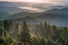 在山的有薄雾的早晨 库存照片