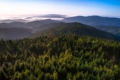 在山的有薄雾的早晨 免版税图库摄影
