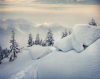 在山的有雾的冬天早晨 免版税库存照片