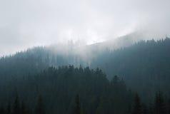 在山的有雾的天 免版税库存图片