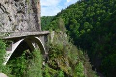 在山的桥梁 库存图片