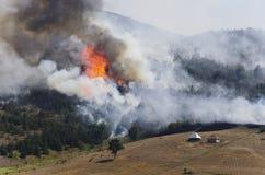 在山的森林火灾 免版税库存照片