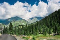 在山的横向夏天 图库摄影