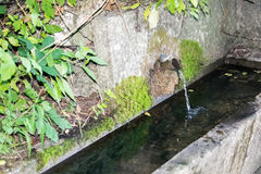 在山的水源 免版税图库摄影