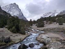 在山的河奔跑 免版税图库摄影