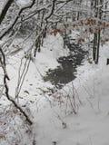在山的溪 免版税库存图片