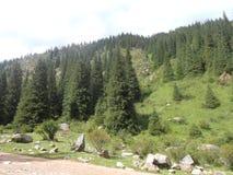 在山的漫长的路 免版税库存图片