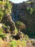 在山的瀑布关闭。非洲,埃塞俄比亚。 免版税库存图片