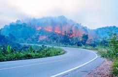 在山的火。 免版税库存图片