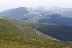 在山的牧群 免版税库存图片