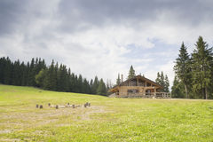 在山的瑞士山中的牧人小屋 库存图片
