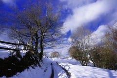 在山的田园诗冬天山风景 免版税库存照片