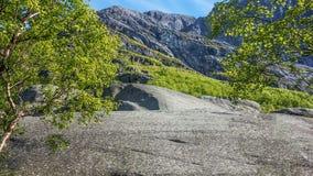 在山的石高原 库存照片