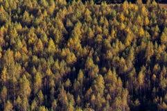 在山的秋天下午 库存照片