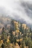 在山的秋天天 免版税库存照片