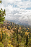在山的秋天天 免版税库存图片