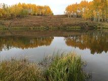 在山的秋天颜色在湖2 免版税库存照片