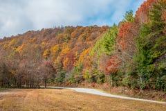 在山的秋天颜色 免版税库存图片