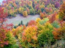 在山的秋天颜色 免版税图库摄影