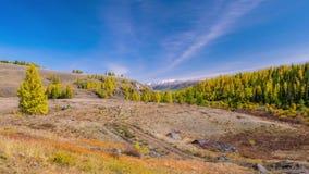 在山的秋天 风景全景 股票视频