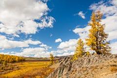 在山的秋天 风景全景 库存图片